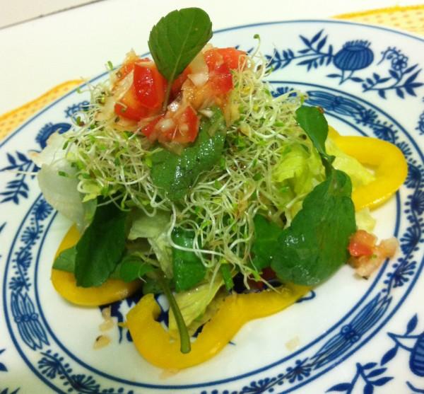 salada-brotos-trevo